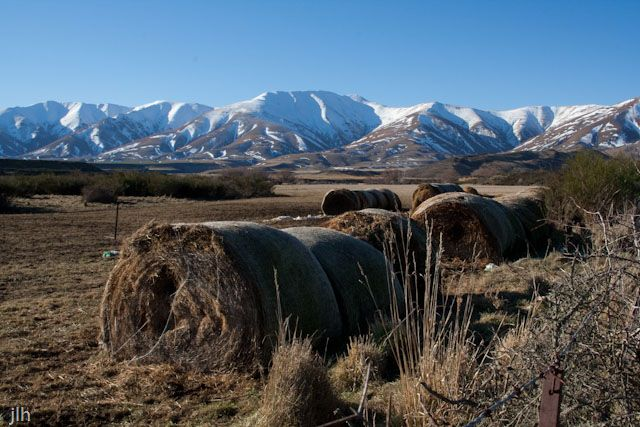 The scenery in Central Otago was amazing. But this shot is a reminder that for all its beauty it is very much a working environment and that come rain or shine animals still need to be feed. It is at the same a beautiful place and a harsh environment where drought conditions and beautiful winter scenes combine. Don't be fooled, it requires special people to farm here.