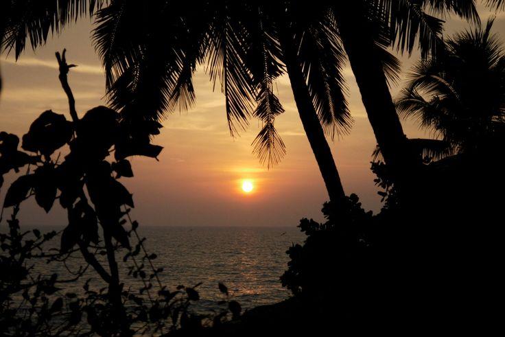 Sperimentato in prima persona: l'Ayurveda al Nikki's Nest in India #nikkisnest #India #kerala #ayurveda #viaggiare #esperienza