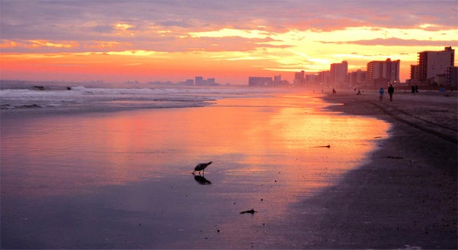 Join. North myrtle beach sunset properties leaves