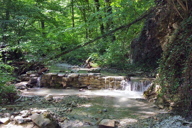 Прохладные воды реки Пшада