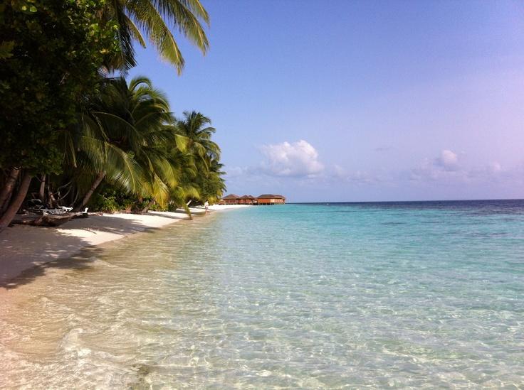 Best Maldives Ari Atoll Images On Pinterest Island Resort - Island resort maldives definition paradise