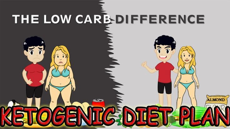 Ketogenic Diet Plan For Quick Weight Loss - Ketogenic Diet Plan Recipes