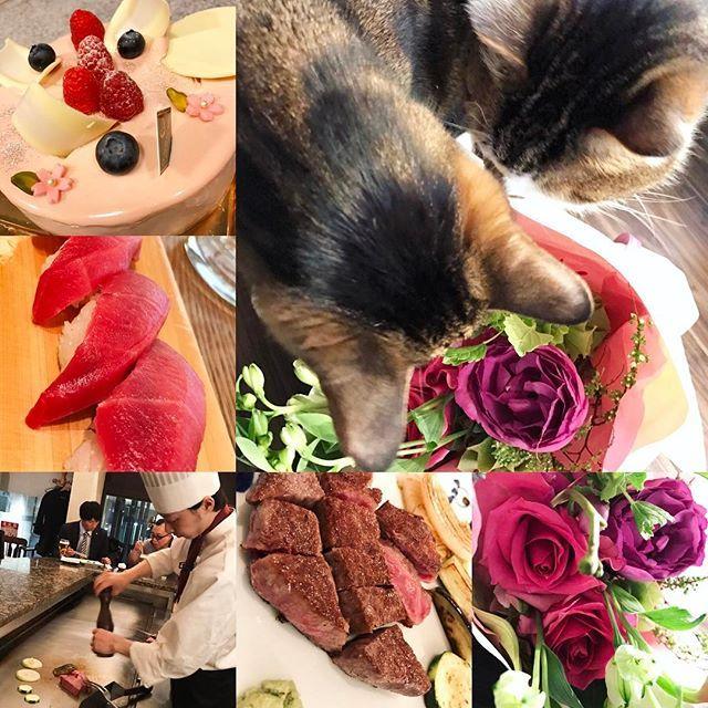 おはようございますちくにです(・∀・)ノ … お誕生日はダンナさんにお祝いしてもらいました♡肉に寿司♡ たくさんのお祝いのメッセージ。あとケーキとお花わざわざ届けてくれてありがとうございましたー✨感激でしたー✨来年も待ってまーす笑 五郎と清吉お花食べないで〜😂 … #美容師#美容師募集#美容師新卒募集#お祝い#誕生日#プレゼント#花束#ケーキ#鉄板焼#寿司#フォロー#フォロバ#築地玉寿司#誕生日ケーキ#猫#誕生日プレゼント#肉#ステーキ#おいしい#猫花食べる#美容院#美容学校#美容学生#優しいダンナ#おごり#お腹いっぱい#ディナー#グルメ#川越#贅沢