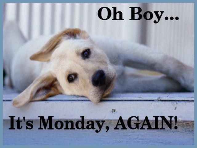 its Monday again quotes quote days of the week monday quotes happy monday monday morning