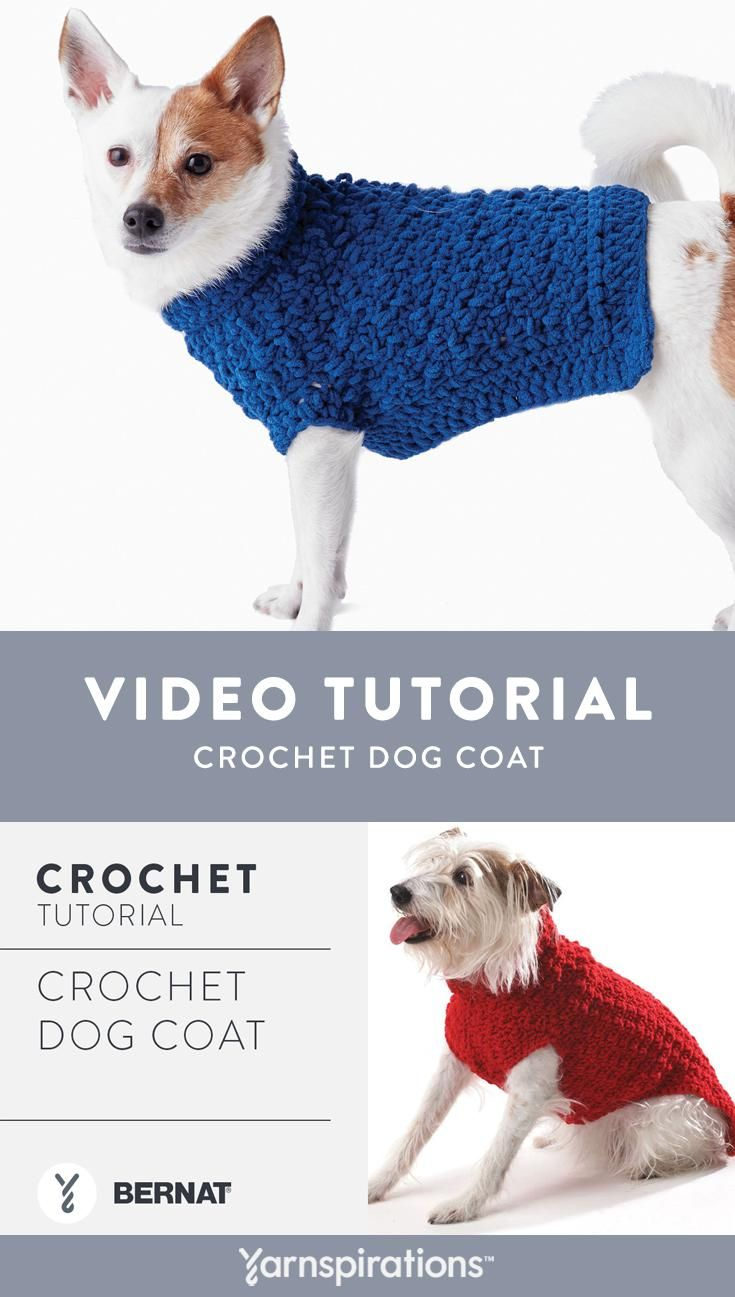 Bernat Crochet Dog Coat | With this free pattern you can make a ...