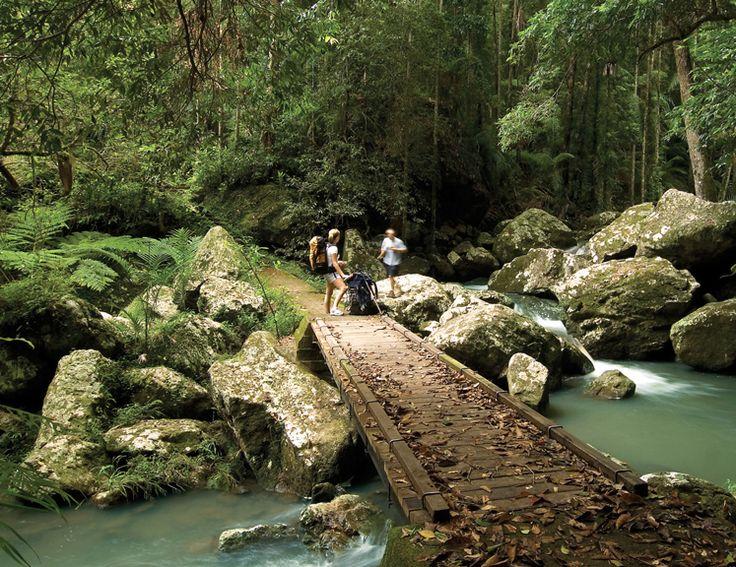 Sunshine Coast Hinterland National Parks