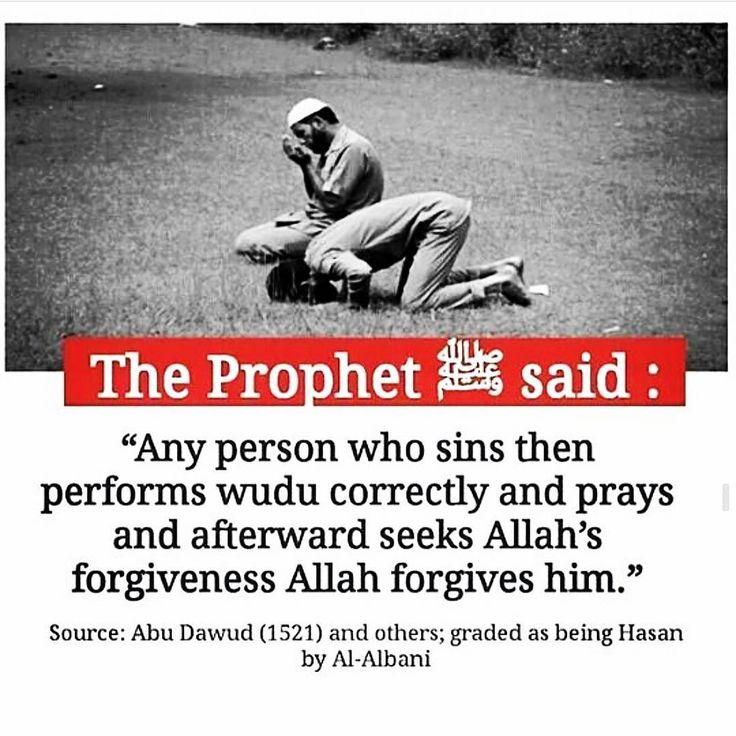"734 Likes, 2 Comments - Jannah My Aspiration (@jannah.my.aspiration) on Instagram: ""#HolyQuran #ProphetMuhammedﷺ #kunfayakun #tawakkul #dawah #repent #Muslim #pray #forgiving…"""