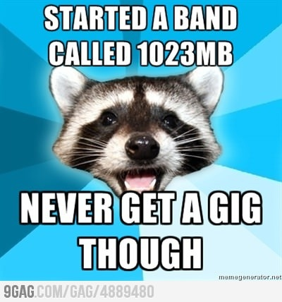 lame pun raccoon - photo #25