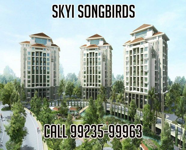 http://www.firstpuneproperties.com/skyi-songbirds-bhugaon-paud-road-pune-by-skyi-group-review/  Fabulous Response For Skyi Songbirds Bhugaon,  Skyi Songbirds,Skyi Songbirds Bhugaon,Skyi Songbirds Pune,Skyi Songbirds Bhugaon Pune,Songbirds Bhugaon,Songbirds Pune,Songbirds Bhugaon Pune