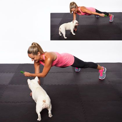 7 Moves You Can Do with Your Pet: plank pass