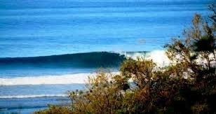 Safari Surf School - Playa Guiones, Nosara, Guanacaste Province, Costa Rica