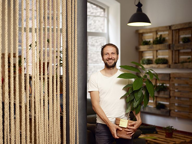 Ecosia, el buscador que planta árboles con tus búsquedas @alvarodabril