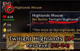 I think I may have found one of the most unique possible pets: a level 6 Cata mouse. #worldofwarcraft #blizzard #Hearthstone #wow #Warcraft #BlizzardCS #gaming