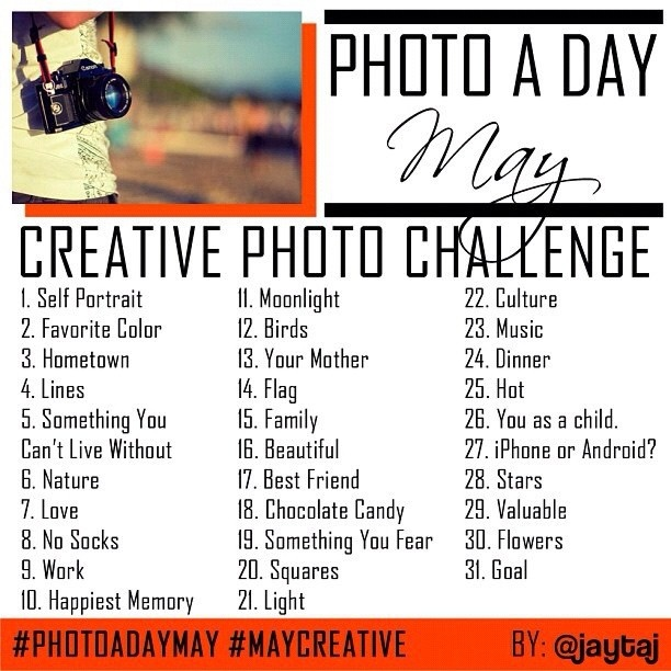 yes. i shall do this. it will be fun. and you will all enjoy looking at my photos. friends of pinterest and beyond...JOIN ME: Photos, Photoaday, Photography Challenges, Photo A Day, Photo Ideas, Photography Tips, Fun, Photo Challenges, Photochallenges