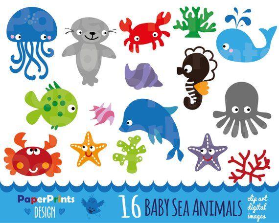 16 Baby Sea Animals Sea Animals Patterns Sea Animals Etsy Animal Clipart Sea Animals Baby Clip Art