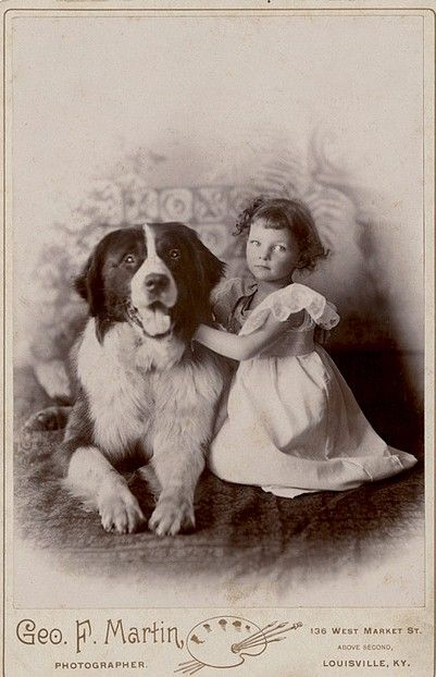 +~+~ Antique Photograph ~+~+  Young girl with adorable big dog.