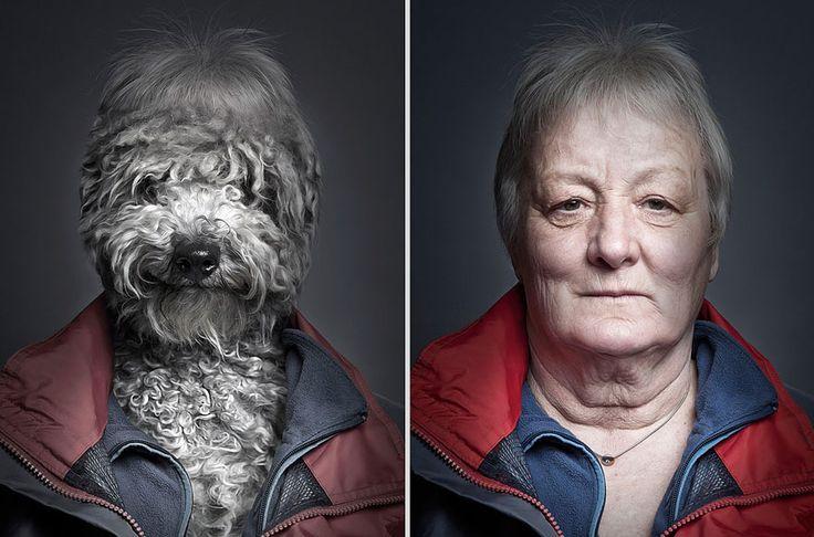 portraits de chiens habilles comme leurs maitres 2   Des chiens habillés comme leurs maîtres   Sebastian Magnani photo perruque maitre image habit chien