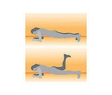 Front Plank with Donkey Kick.