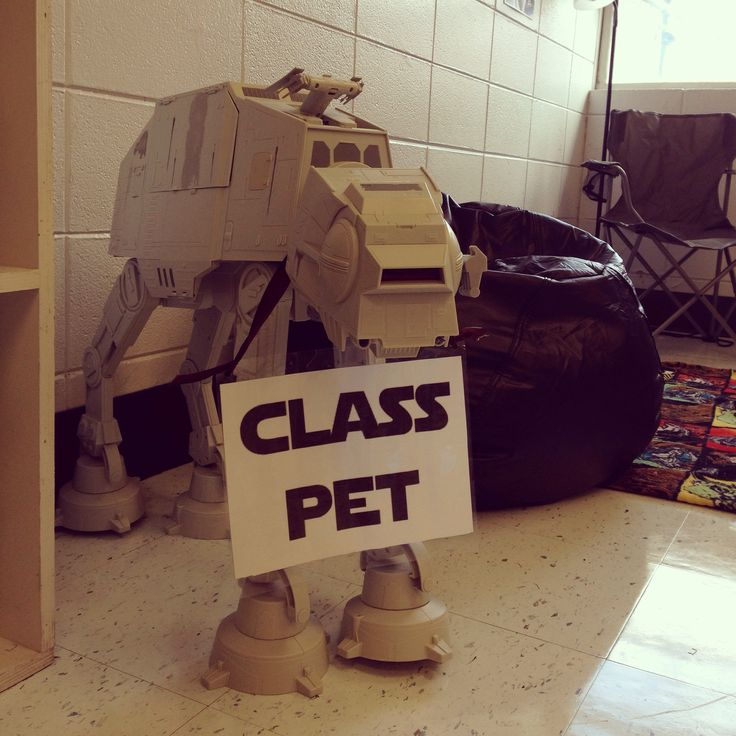 Classroom Pet Ideas ~ Best images about star wars classroom ideas on