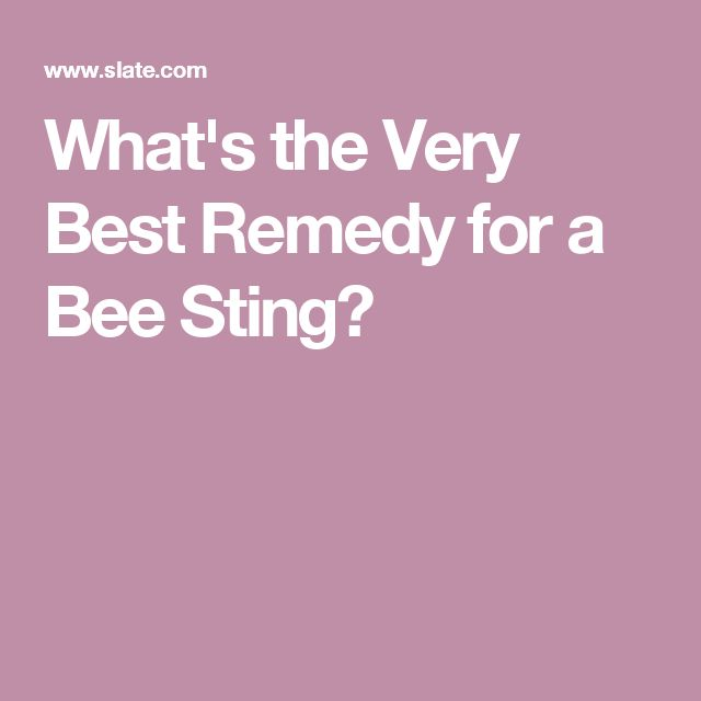 What's the Very Best Remedy for a Bee Sting?
