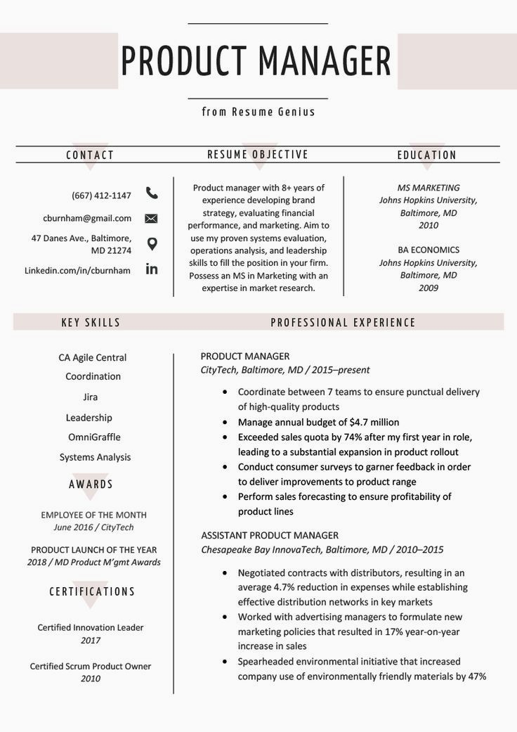 85+ Creative Cv no experience in 2020 Project manager