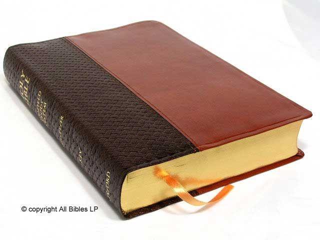 bibles - Google Search