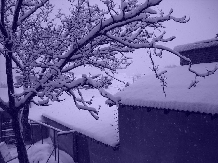 Beutiful look from my window...  Pozarevac, Serbia... :D