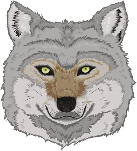 Wolf design by Sweet Beet | Teequilla