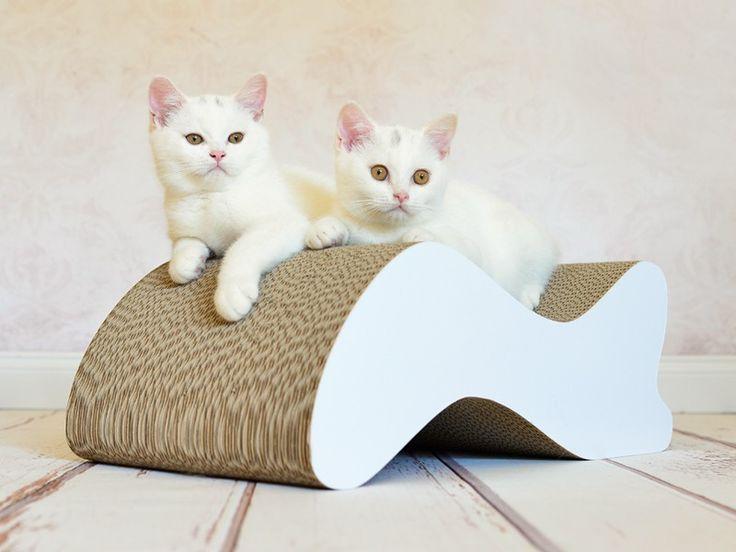 17 meilleures id es propos de griffoir sur pinterest griffoir pour chat mobilier pour chat. Black Bedroom Furniture Sets. Home Design Ideas
