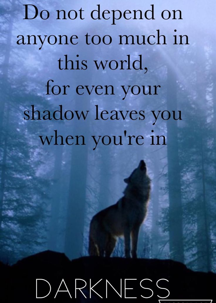Epic wolf quote — not my quote | Quotes and Inspiration ...