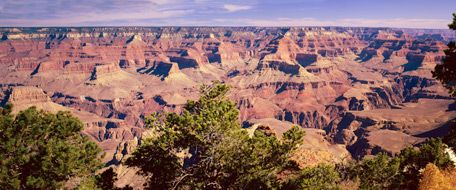Grand Canyon is a must see.  We always stop during our road trips to see my Mom in Oklahoma.