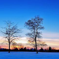 Trouble bipolaire : les changements de saison peuvent déclencher des épisodes | Psychomédia