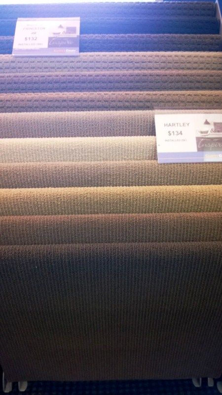 Princeton Rental Carpet $139 installed 4 mt wide -  Hartely now not available.