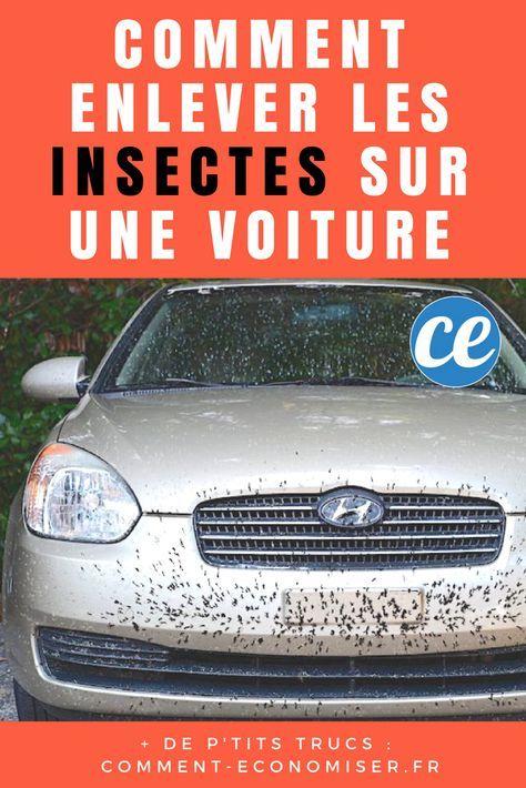comment enlever les insectes sur une voiture avec du. Black Bedroom Furniture Sets. Home Design Ideas
