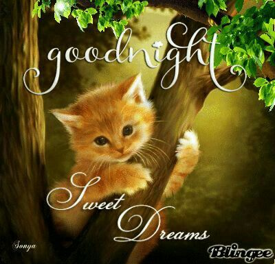 Have a good night, sweet dreams, God bless you