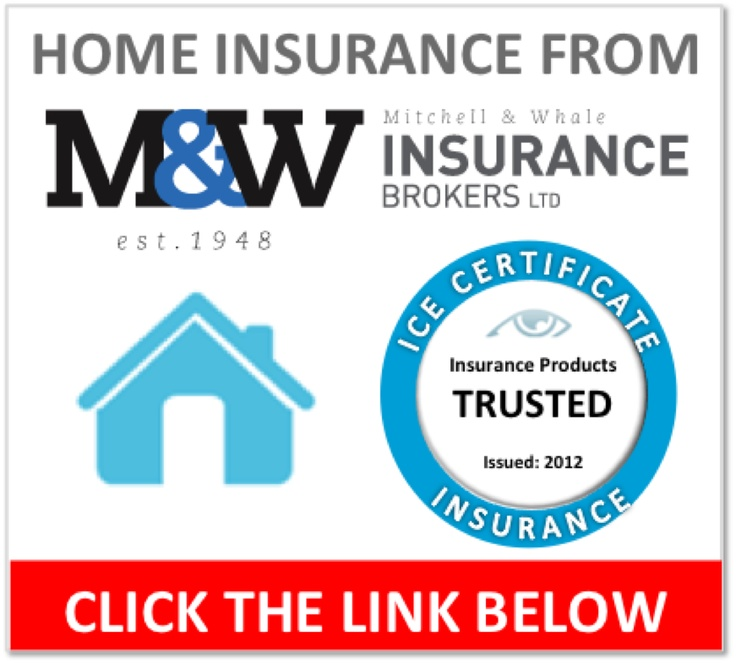 InsurEye Consumer Experience Certificate for Mitchell ...