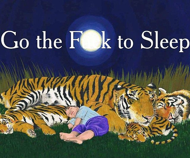 Go The Fuck To Sleep is a children's book for grown ups, a hilarious take on tired parents who just want their damn kids to go to sleep. Seriously kids, go the fuck to sleep already, we've got to go to work early in the morning tommorow.