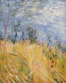 Vincent Van Gogh (1853-1890) Champ de blé avec coquelicots, 1887 Huile, Denver, Art Museum Le peintre opte ici pour un format vertical qui accompagne le mouvement des blés.