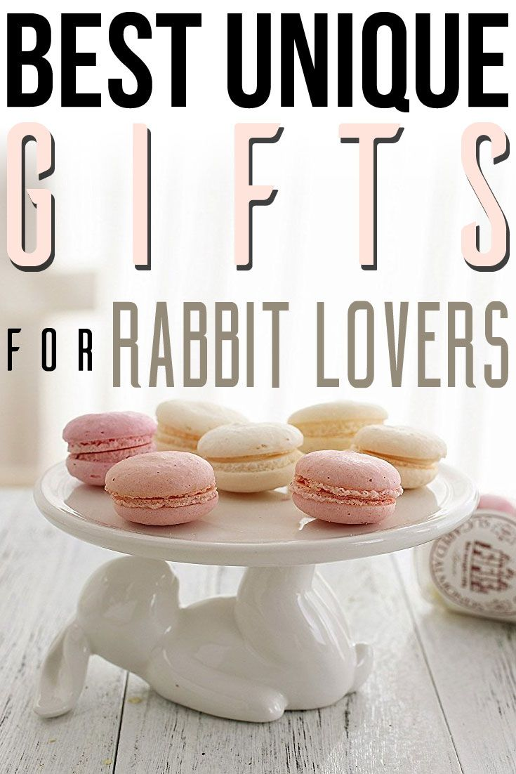 Best Unique Gifts & Gift Ideas For Rabbit Lovers And Bunny Owners