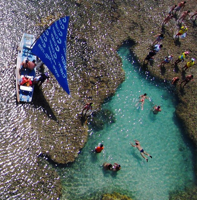 Necesito esto: Brazil, Beaches Resorts, Natural Pools, Design Bags, Chickens, Galinha Beaches, Travel, Louis Vuitton Bags, Harbor