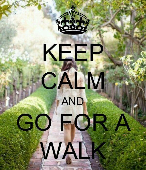 Mantenha a calma e siga o seu caminho.