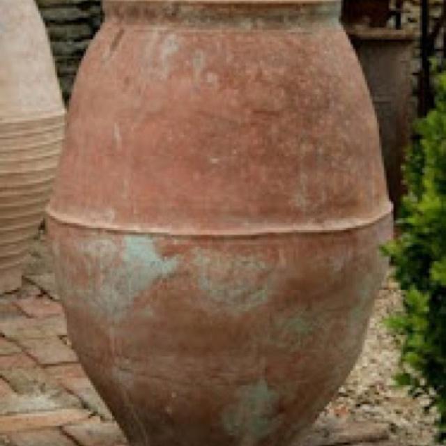 17 Best Images About Olive Jar Planters On Pinterest