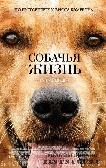 Собачья жизнь / A Dog's Purpose (2017) Комедия / Фэнтези / Премьера  #фильмы #кино #премьеры #комедия #фантастика