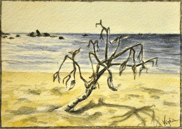 Postcards  watercolor 11x15 cm