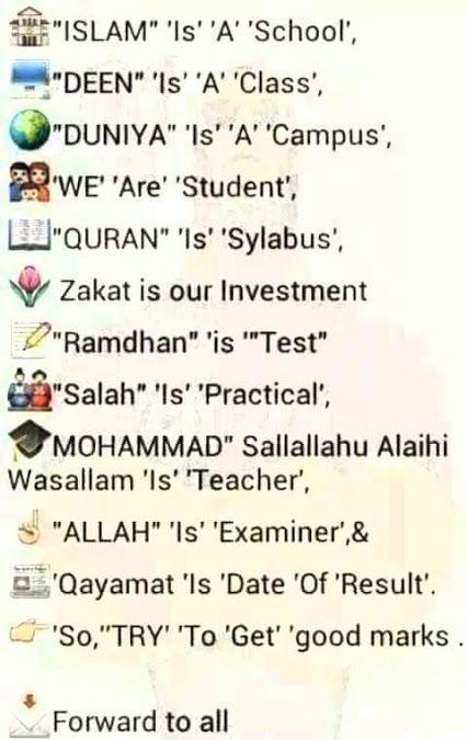 Islam is best. ~so tru dooe