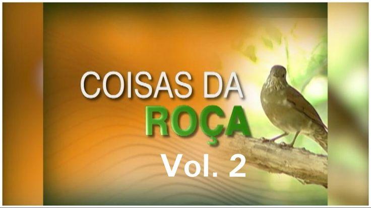 COISAS DA ROÇA - VOL.  2 - MODAS DE VIOLA - RAIZES SERTANEJA - MUSICA CA...