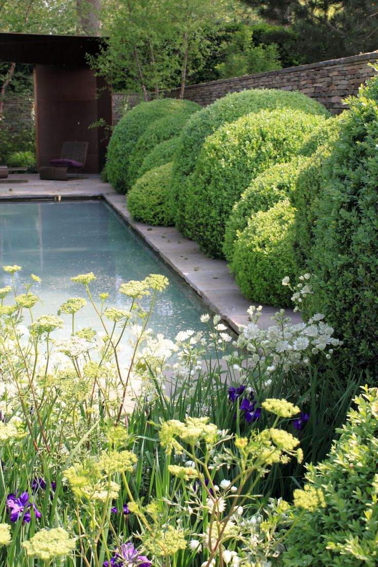 576 best images about g landscape on pinterest gardens for Gardens around pools