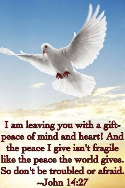 """Peace I leave with you; my peace I give you. I do not give to you as the world gives. Do not let your hearts be troubled and do not be afraid."" John 14:27"