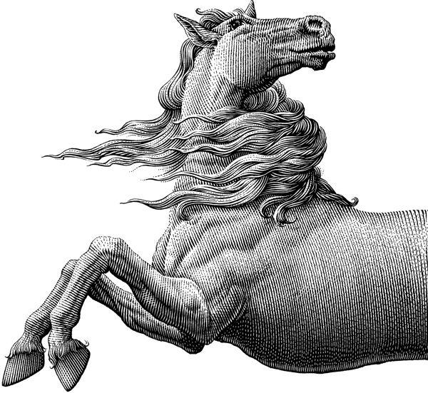 Conceptual Illustrations by Michael Halbert | FreeYork
