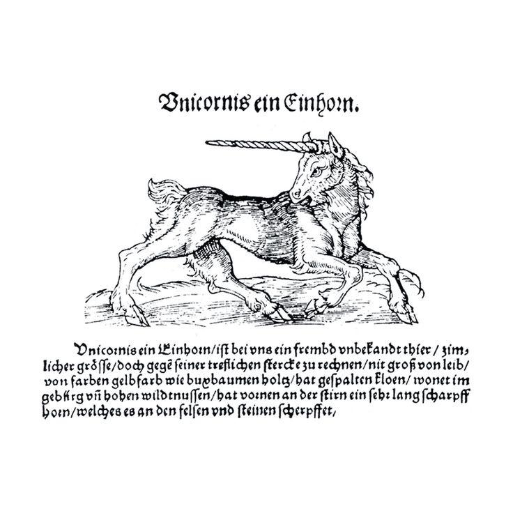 Unicornis - ユニコーン - Wikipedia